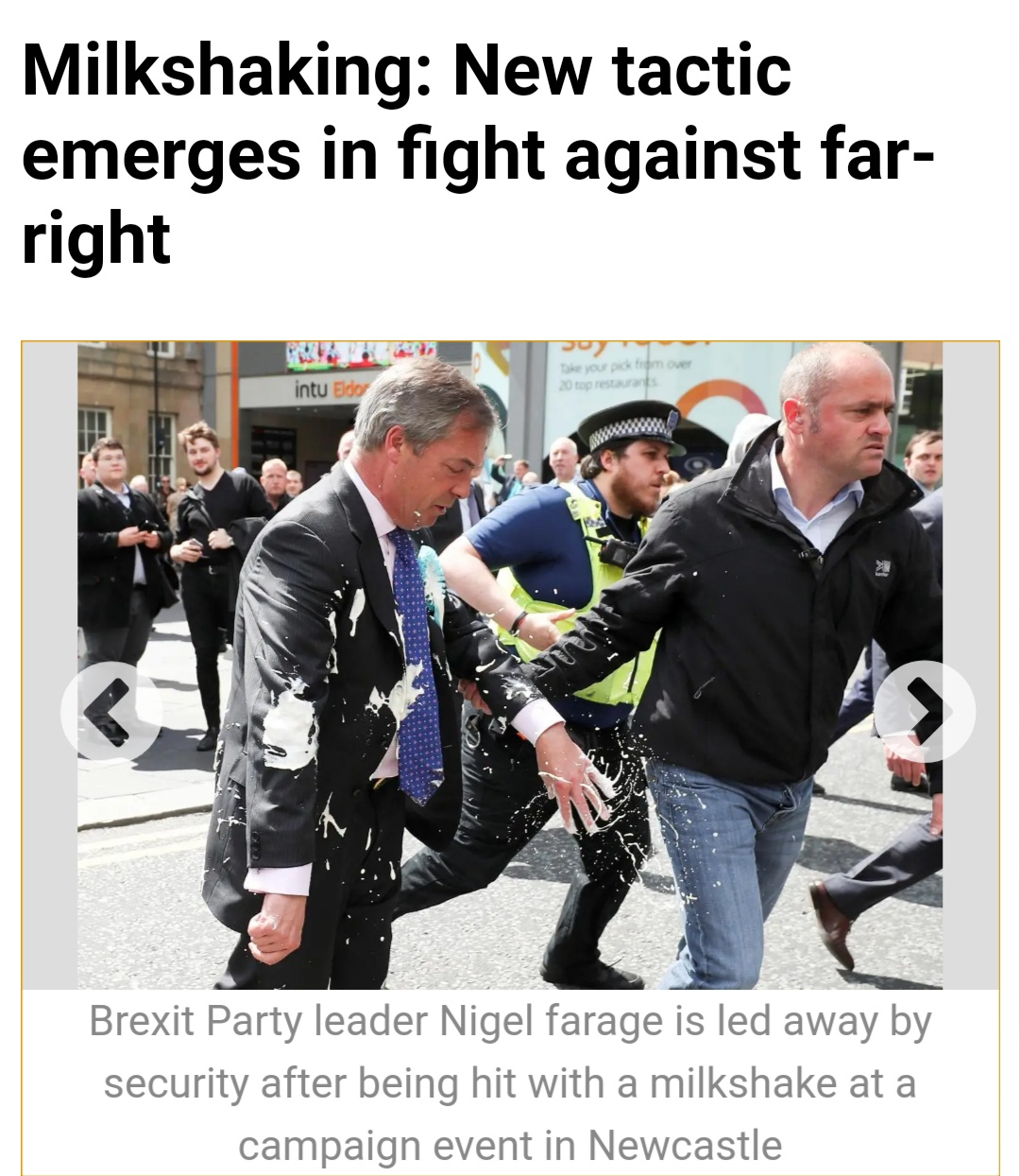 Nigel Farage security